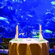 Burj Al Arab Hotel Dubai gloednieuwe superrijke gast Mind Your Guest Robert Bosma